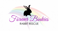 Forever Binkies Rabbit Rescue