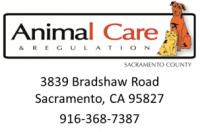 Sacramento County Animal Shelter