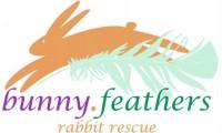 Bunny Feathers Rabbit Rescue