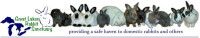 Great Lakes Rabbit Sanctuary