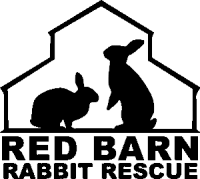 The Red Barn Rabbit Rescue